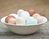 Egg Photography pastels kitchen cottage decor organic free range tan beige white sage soft pink spring - Farm fresh eggs - fine art photo
