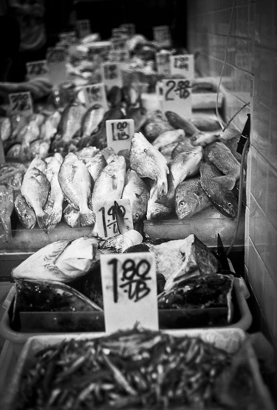 Food NYC Photography Chinatown fresh per pound lb scales epicurean foodie seafood meal delicacies sushi - Fish Market - fine art photograph