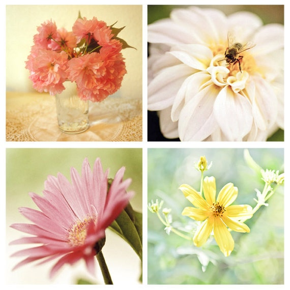 Set of 4 Flower Images mom cherry blossoms dahlia gerbera daisy cosmo pink yellow canary bee pastels fine art photos 4x4