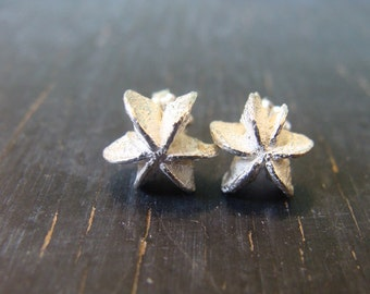 Star Seedpod Posts -- Botanical Earrings -- Nature Cast -- Ready to Ship