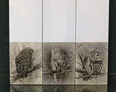 Barred owl, bookmarks, set of three