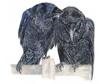 The Ravens of Truth and Memory