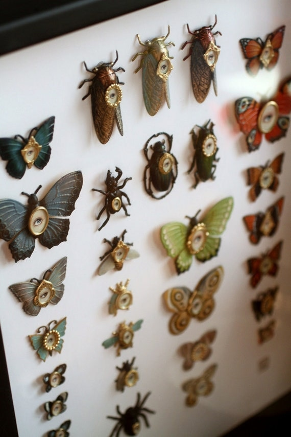 Reserved for Marie - Cabinet of Curiosities Specimen no. 1 - The Curious Collection - original 3D insect paintings by Mab Graves