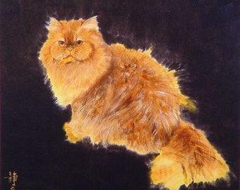 Cat - Persian, 11 x 14