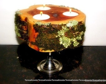 Lichen and Moss covered 3 light  Cedar candle holder-Silver candlestand NOT included
