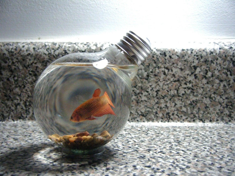 Repurposed Lightbulb Beta Fish Bowl