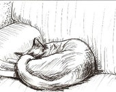 Sleeping Cat Pen and Ink ACEO