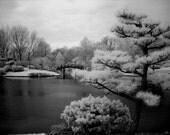 Feng Shui Wall Art, fine art photography, black and white photography, infrared photography, home decor photography, st. louis photography