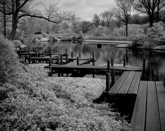fine art photography black and white, garden photography, infrared photography, black and white photography, bridge,zen, feng shui,