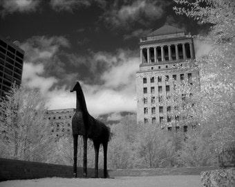 City Garden photo, St. Louis photography, black and white photography, The Arch, fine art photography, Missouri photography, garden