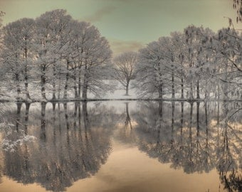 Zen Wall Art, Feng Shui, Zen, fine art photography, tree photos, landscape, home decor photography, serene photo, infrared photography
