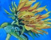 SALE  Sunflower  SALE