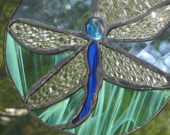 Dragon fly in a raindrop