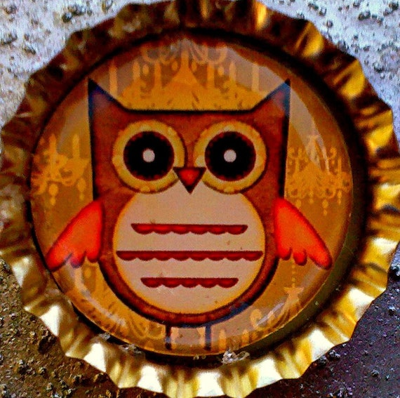 CLEARANCE-Cute Autumn  Harvest  Owl bottle cap magnet
