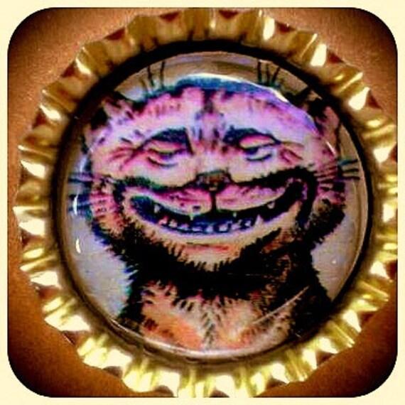 RESERVED for tonya000-Vintage Crazy Grinning Cat bottle cap magnet, DOD magnets and rooter bottle