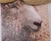 British Wensleydale Aran weight yarn dyed in Pomegranate and Natural Indigo