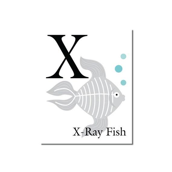 S A L E X Is For X Ray Fish The Letter X ABC Alphabet