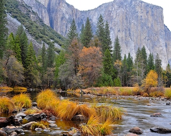 Fine Art Print, Yosemite National Park, California