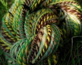 Rain forest Frog double ply yarn, hand dyed hand spun
