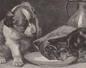 Sweet puppy and kittens Art Illustration 1912 To Frame