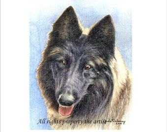 """Belgian Tervuren  Reproduction Mini Print """"Lacey"""" by Jude Delaney"""