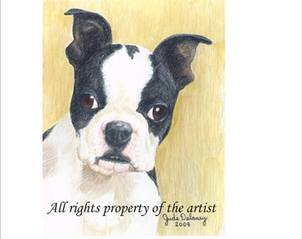Boston Terrier Puppy Mini Print by Jude Delaney