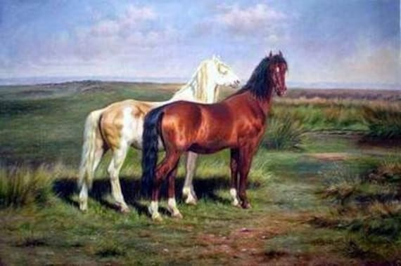 Horse Portrait Paintings - A custom 12x16 museum quality oil painting of your horse.