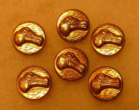 Lot 6 Vintage Gold Tone HORSE Head EQUESTRIAN Buttons Set