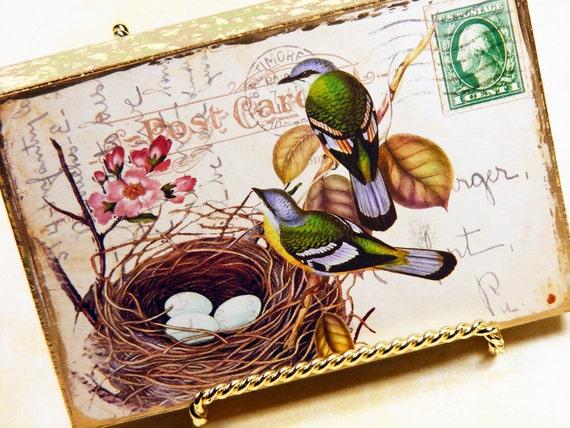 Art Block Bird Nest Cottage Postcard Art, Green Birds Nest Postcard Art