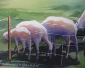 Sheep, Over the Hill, ACEO, 689, collectable, lamb,  pastural,  2.5 x 3.5 inches, green, whimsy