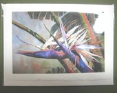 Bird of Paradise, 5 x 7  Note Card, watercolor print Tropical Flower, Florida, purple lavendar