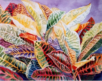 Crotons, Watercolor, Print  8 x 11, Home Decor, tropical, Florida, colorful - watercolorsnmore