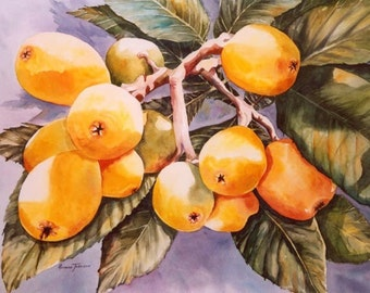 Loquats, Japanese Plums, 11 x 15, Watercolor, Print, Fruit, Home Decor, Decorative art, yellow, tropical