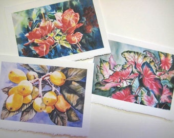 3 Floral assortment 5x7 Note Cards Caladiums  Loquats  Bougainvilleas Japanese Plums  fruit yellow