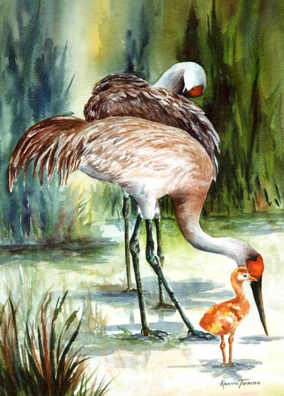 Sandhill Cranes watercolor print ACEO, A Family Affair, 797 Florida, Shorebird watercolorsNmore