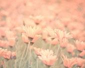Sweet memories / pastel field of yellow flowers / photograph / fine art print / by Kitoki - 8x8