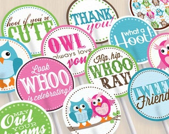 """OWL Birthday 2"""" Cupcake Toppers and Party Circles in Pink and Teal- Instant Printable Download"""