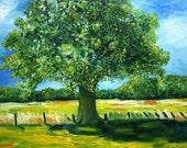 Oak Tree Oil painting Dutch Landscape 50 x 60 cm