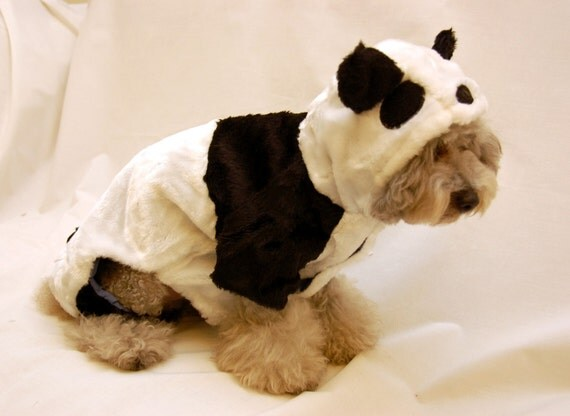 Panda Costume Cat Panda Bear Costume Outfit For