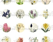 SALE!!!Spring Floral Collage Sheet for 18mm Charms -  - Printable INSTANT Download