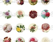 SALE!!! Vintage Peony Digital Collage Sheet for 18mm Charms Peonies, Floral, Circle, Flower Jewelry Images Digital Download INSTANT Download