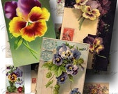Pansy Digital Collage Sheet ON SALE!!! Digital Download / Victorian Floral Flower Pansies Vintage Postcard Ephemera / #2 INSTANT Download