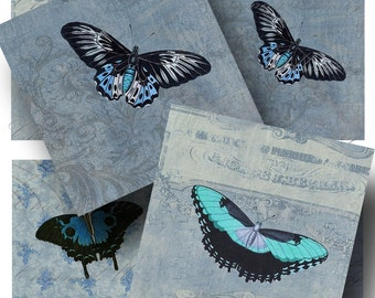 Vintage Blue Butterfly Digital Collage Sheet SALE!! Faded Wallpaper Background,Encyclopedia,Natural History 3 Inch Square / INSTANT Download