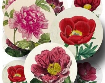 SALE!!!Vintage Peony Botanicals - Digital Collage Sheet - 2.5 Inch Round (1) - INSTANT Download -  - Digital Download