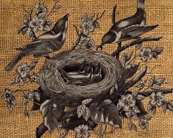 Bird Nest Vintage Digital Collage Sheet #1 / SALE!!! / Digital Download Large Image Iron On Transfer Burlap /Printable INSTANT Download