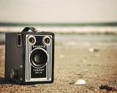 Summer Brownie - 5x7 fine art photography print - collectible and kitschy camera wall decor