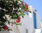 White Stucco House with Red Hibiscus, Mykonos, Greece - High Quality Original Digital Photograph, Perfect for Framing