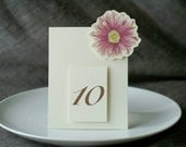 Table Number Tents - Purple Daisy - Decoration for Events, Weddings, Showers, Parties