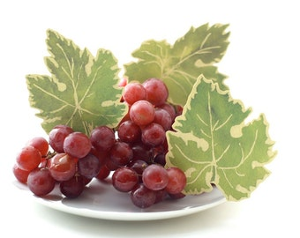 Green Grape Leaves -  Escort Cards - Hand cut prints of original watercolor leaves-  Place cards - decoration - weddings - events