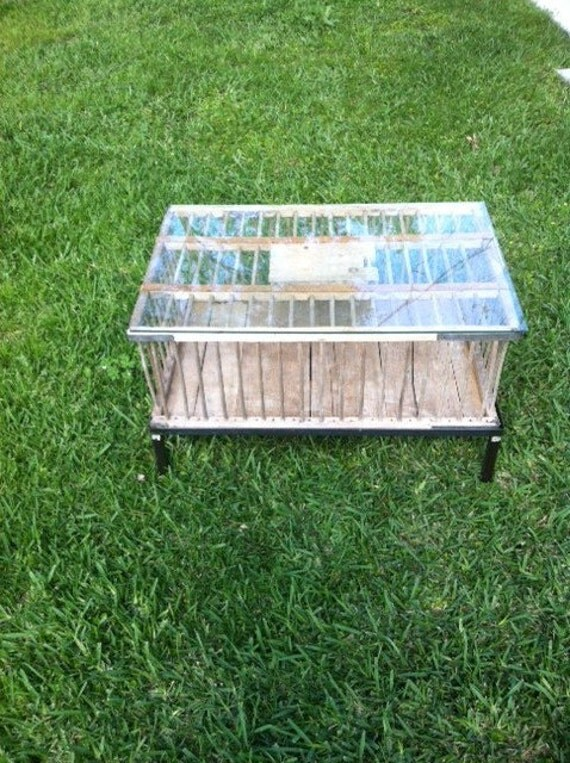 Chicken Carrier Coffee Table
